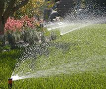 impianti-di-irrigazone-palermo
